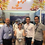 Sungold Presents three new series solar panels at Intersolar Europe 2018